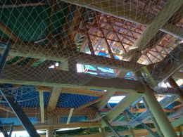 愛知県愛西市稲葉町西光寺本堂新築工事写真