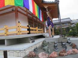 愛西市の西光寺・仏陀